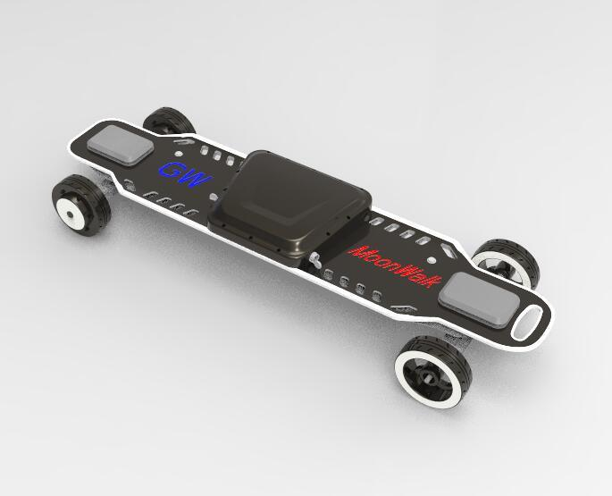 Four Wheels with Dual Hub Motors Electric Skateboard