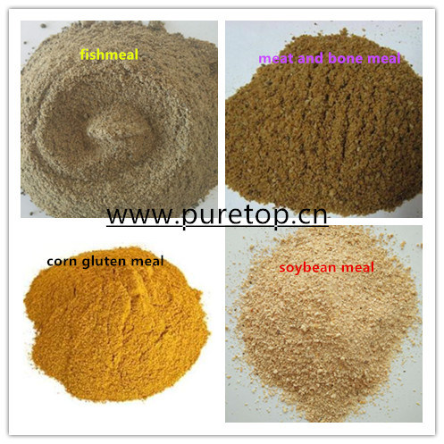 Fish Meal Powder for Chicken Cows