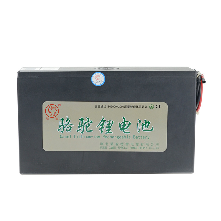 Lithium Polymer Battery 48V 10ah for E-Bicycle