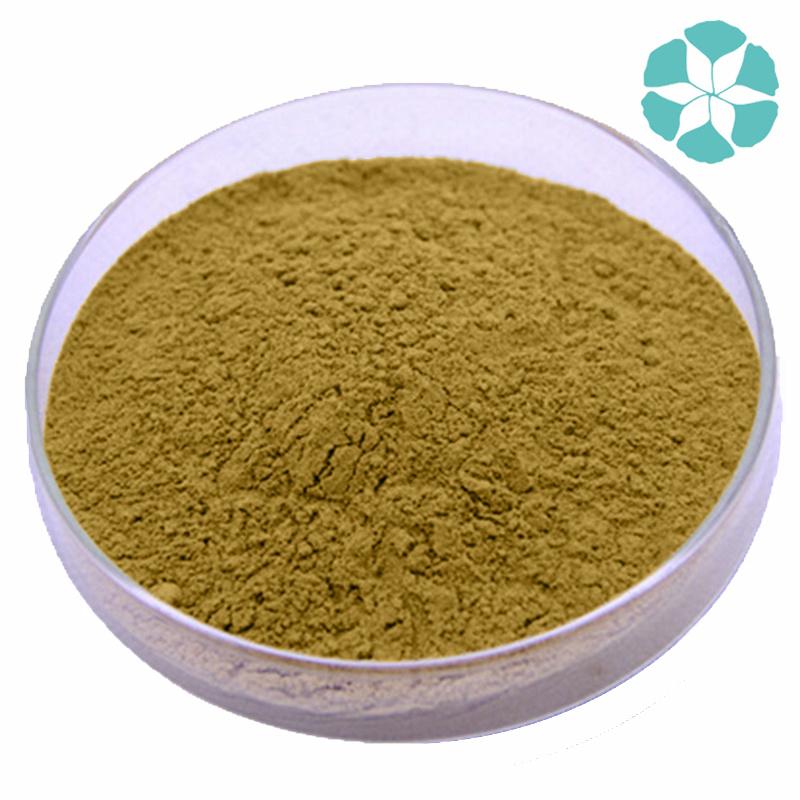 Dandelion Root Extract / Taraxacum Officinale Extract / Flavones