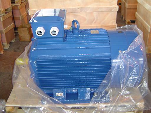General Purpose Three Phase Induction Motor (GOST Standard)