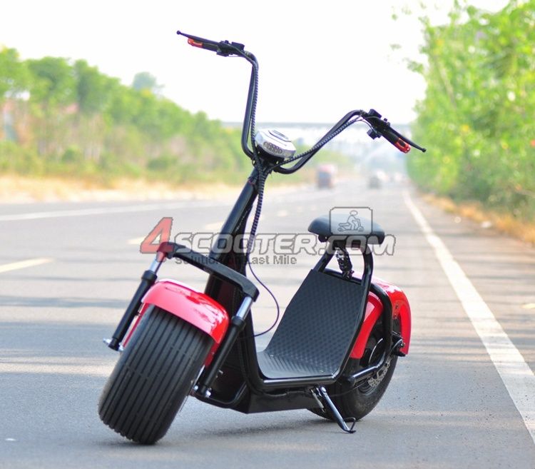 Fashion City 800W 60V Electric Motorcycle for Adult