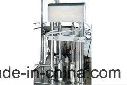 Automatic Eye Drops Liquid Glass & Plastic Bottle Filling Capping Machine