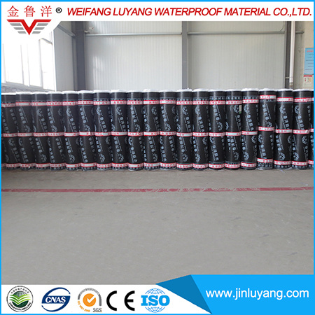 Manufacturer Supply Sbs Modified Bitumen Waterproof Membrane for Roof