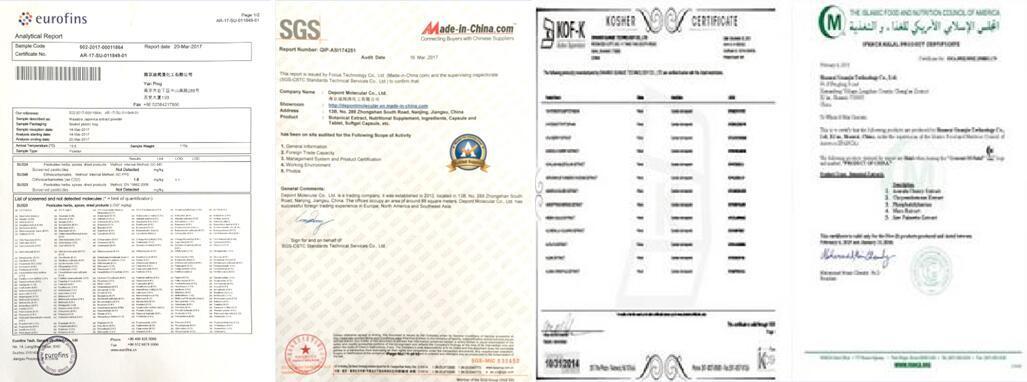 Senna Leaf Extract, Sennoside a+B 20% HPLC