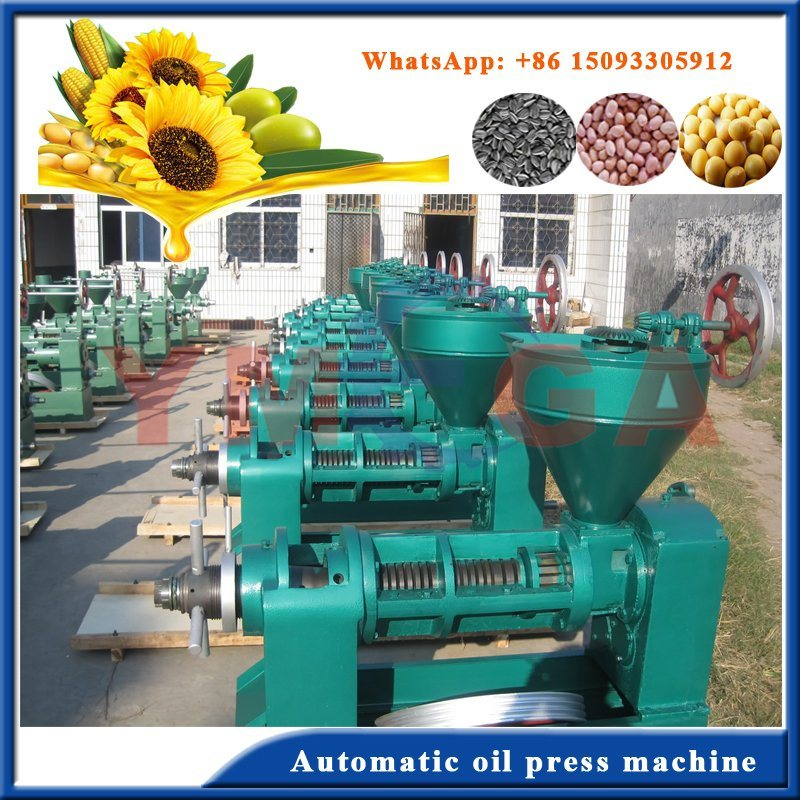Top Quality Screw Cold Oil Press with Competitive Price