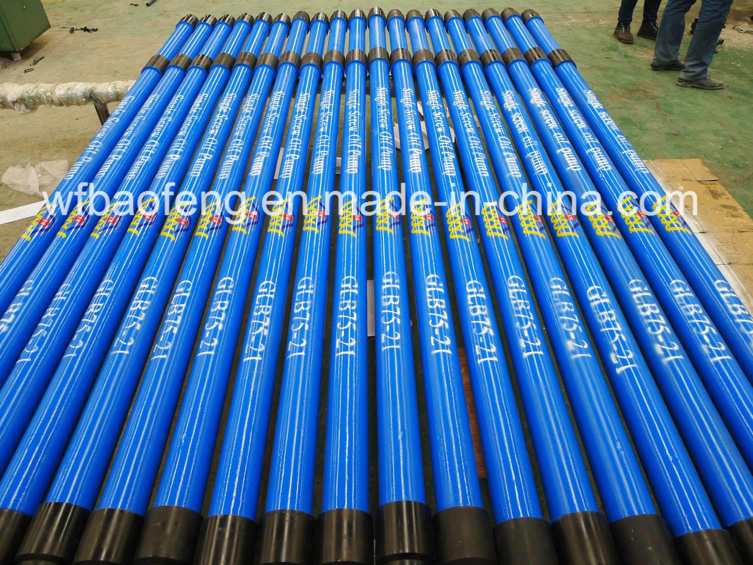 Oilfield Equipment Progressive Cavity Pump (GLB28/40) Screw Pump
