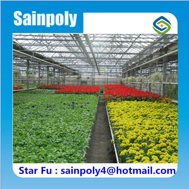 Aluminium Frame High Quality Glass Greenhouse for Sale