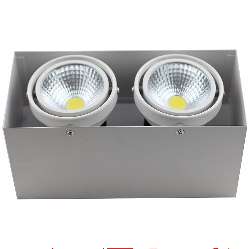 One Head/Two Heads COB LED Grille Light
