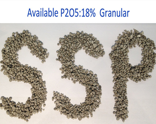 Single Superphosphate (SSP 16% and 18%) Phosphate Fertilizer