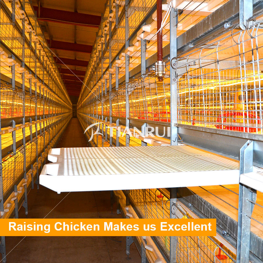 Tianrui Design H Type Good Quality Automatic Battery Chicken Broiler Cage