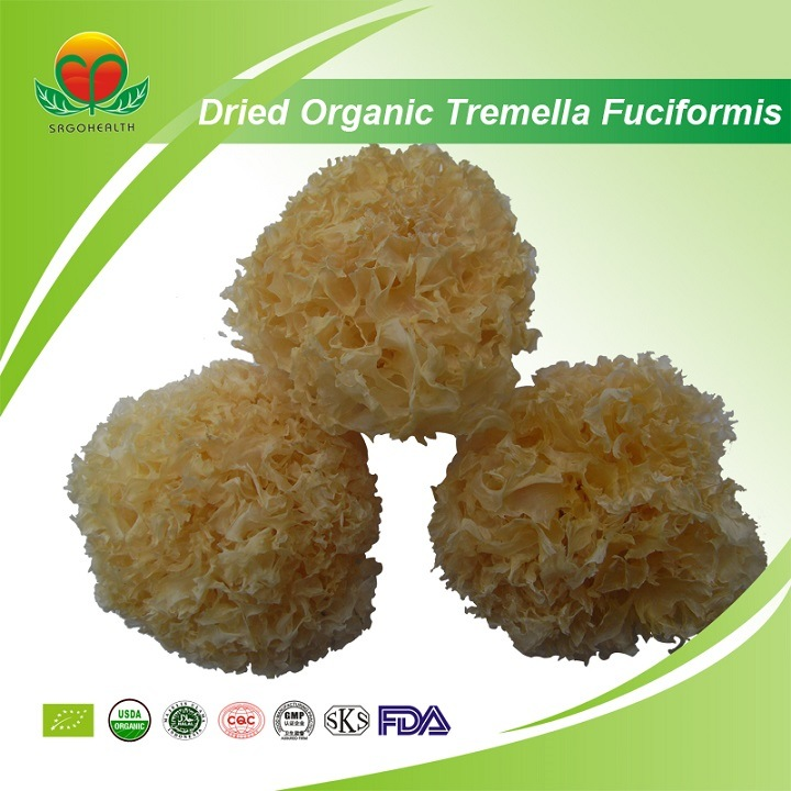 Manufacturer Supplier Dried Organic Tremella Fuciformis