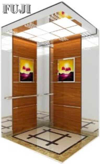 Elegant Series Passenger Elevator / Lift