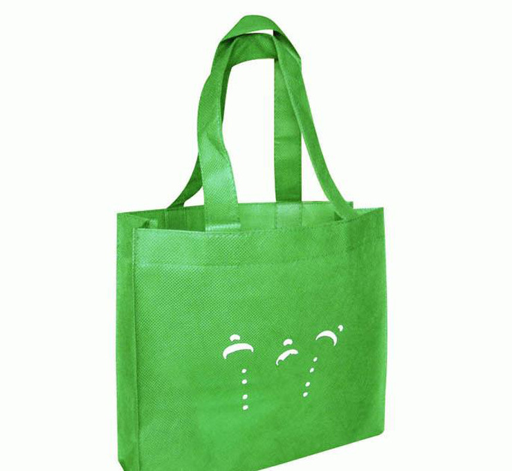 Die Cut Non-Woven Printed Shopping Bags for Garments (FLN-9015)