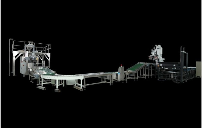 Automatic Packing Palletizing Line