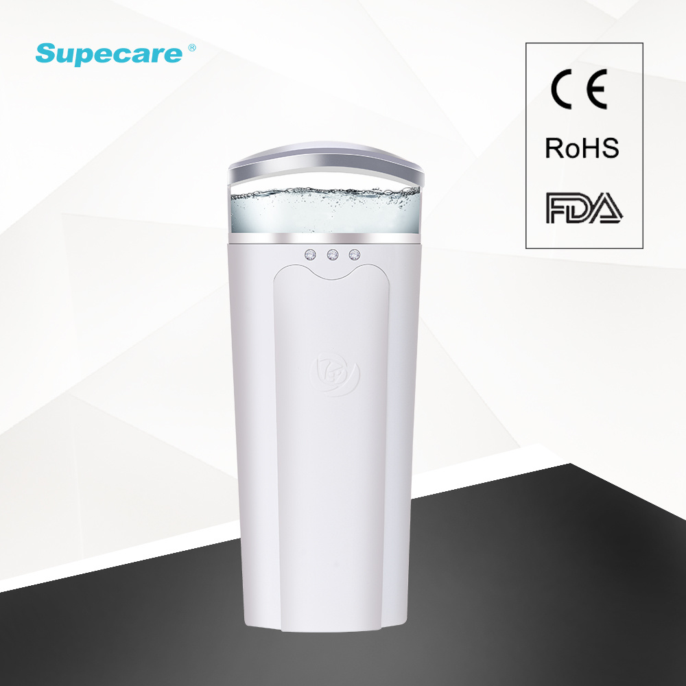 Handy Mist Sprayer Skin Care Equipment with Power Bank Wy-1001