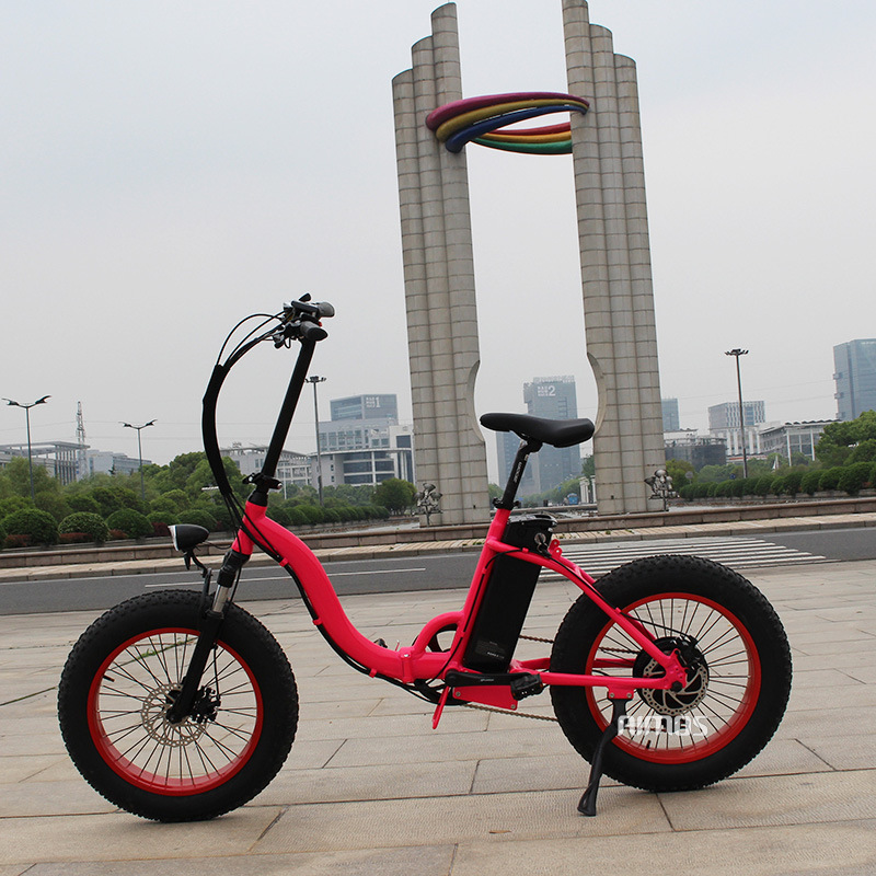 Low Price Electric Bicycle