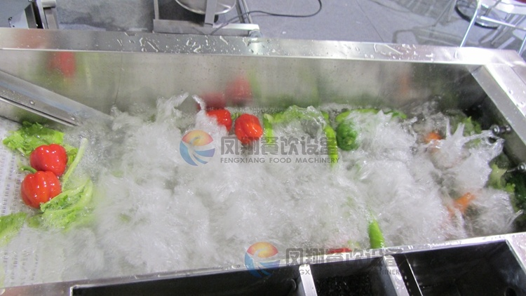 Automatic Multi-Function Air Bubble Fruit Vegetable Washer Washing Machine with Ce Certificated