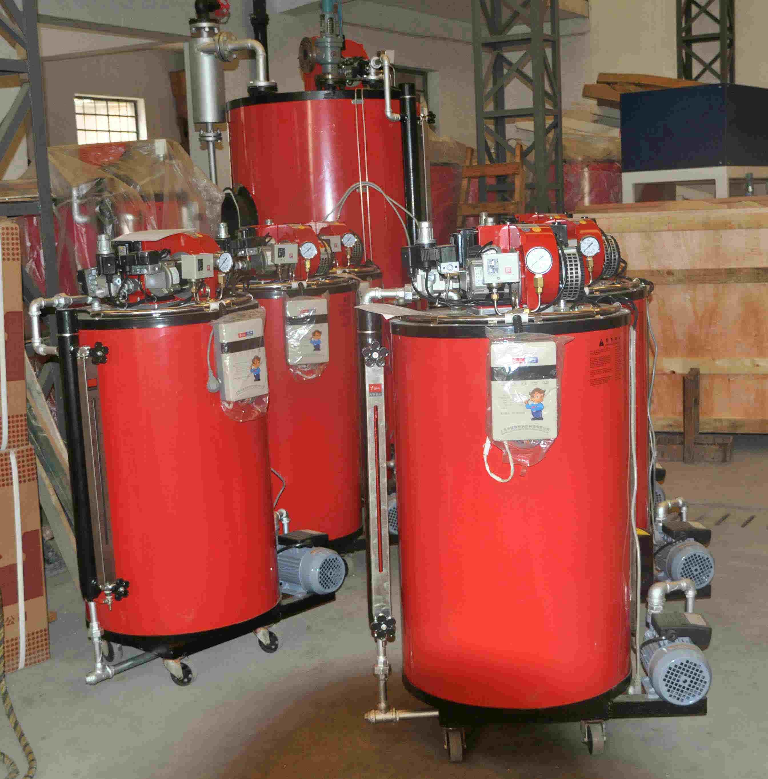 Fuel (Gas) Steam Boiler