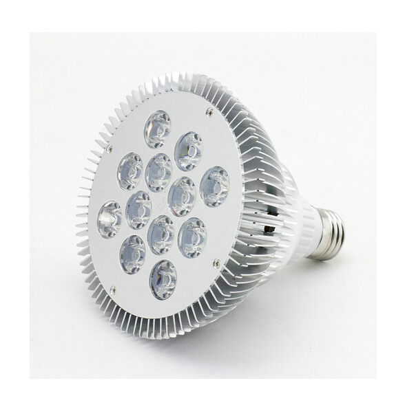 PAR38 12W 220V LED Spotlight