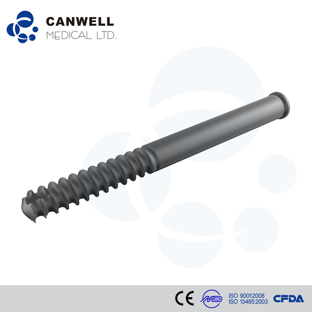 Canwell Expert Femoral Nail Canefn Intramedullary Nail Interlocking Nail Orthopaedic Implants Osstem Implant