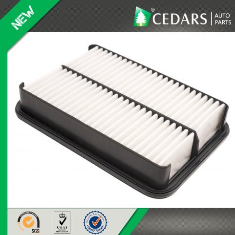 Excellent Filtering Car Air Filter with 12 Months Warranty