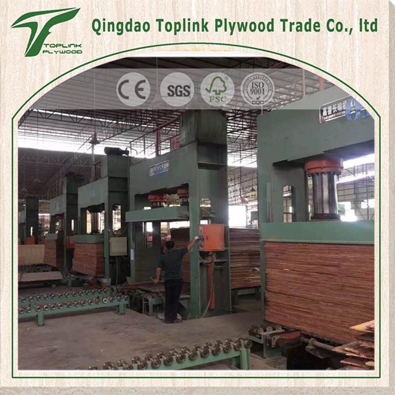 12/18mm Phenolic Board/ Shuttering/ Marine Plywood for Construction