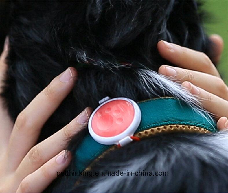 Pet Activity Monitor P1, Pet GPS Tracker Collar