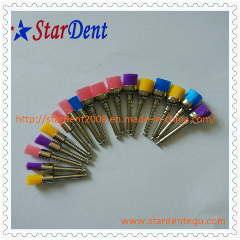 Disposable Prophy Brushes Factory of Dental Hospital Medical Lab Surgical Diagnostic Equipment
