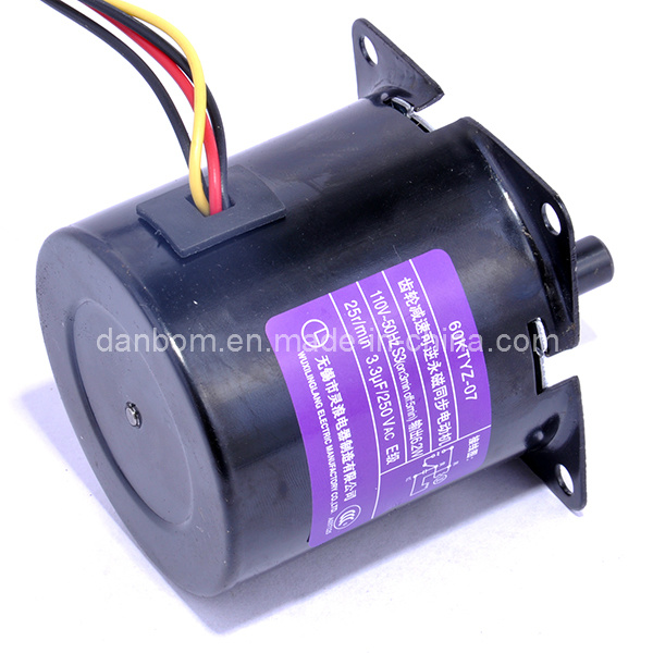 AC Sinlge Phase Synchronous Gear Motor