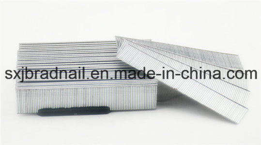 Exporting Standard Factory Selling 18ga F Brad Nails