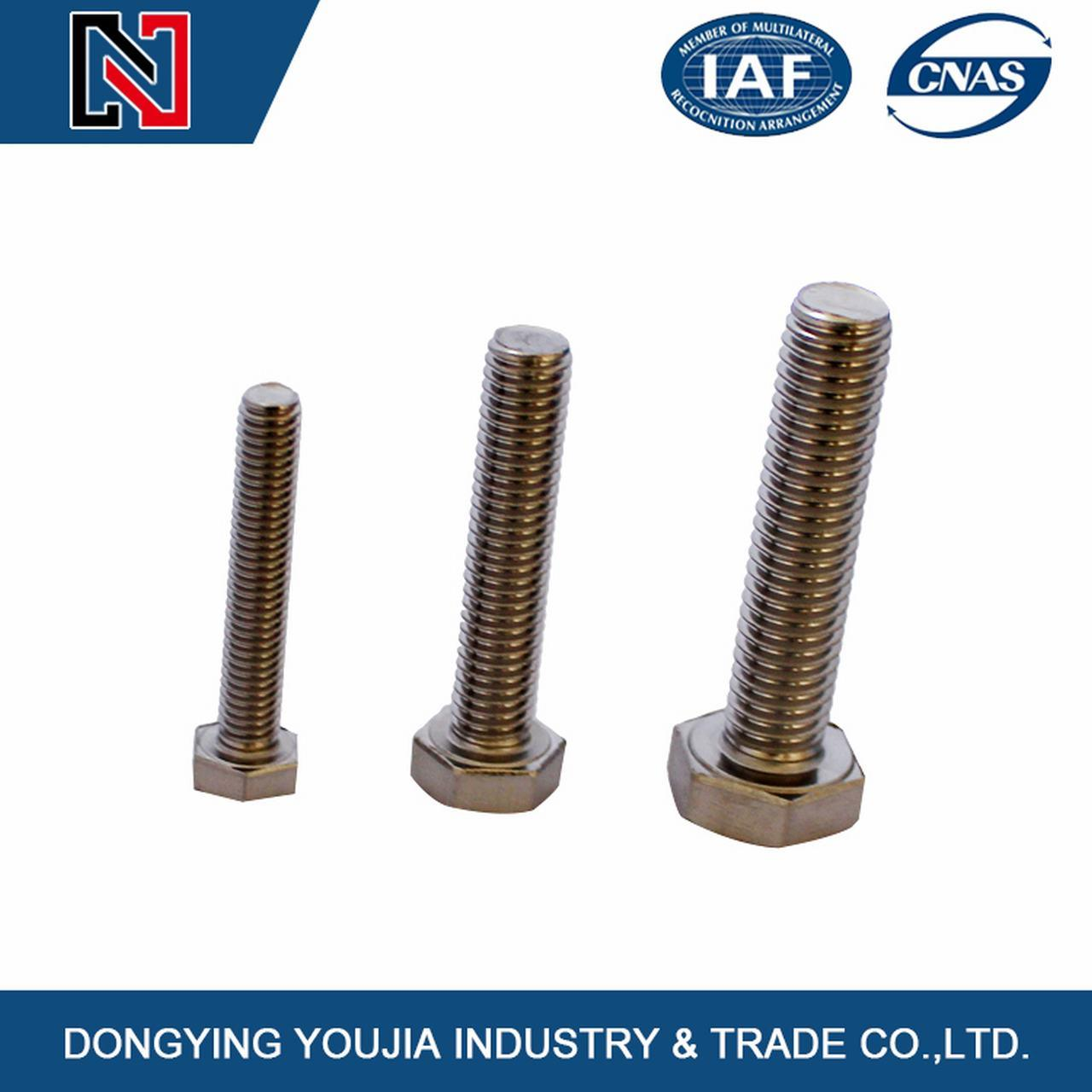 Gold Supplier High Tensile Stainless Steel Hexagon Head Bolt