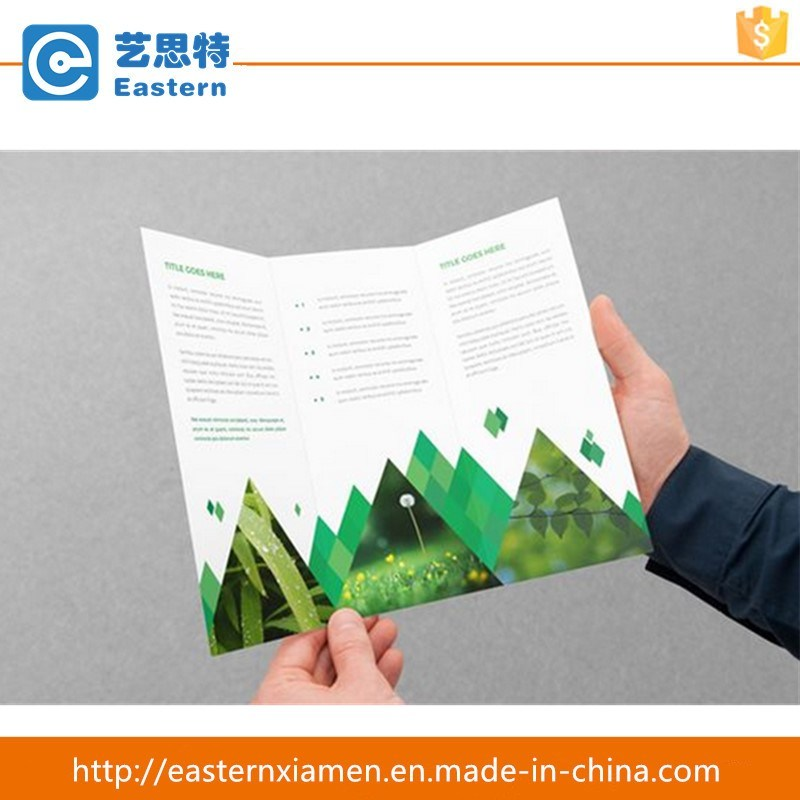 Trifold Paper Printing Folding Brochure