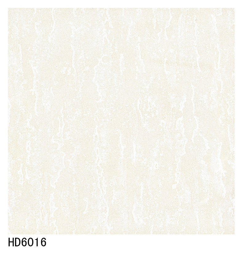 Made in China Soluble Salt Porcelain Tile 600X600 800X800