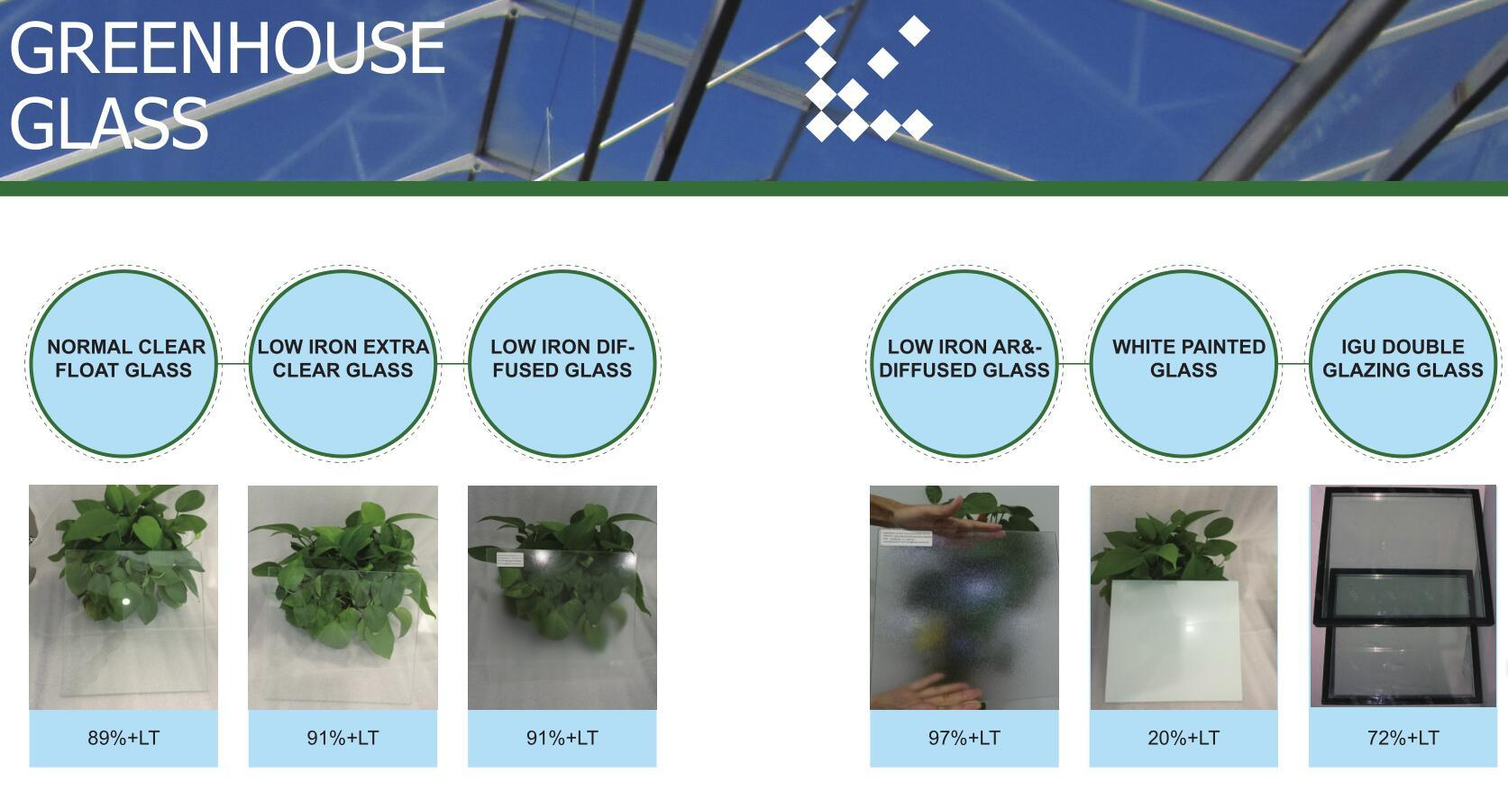 4mm Low Iron Diffused Horticulture Glass for Greenhouse