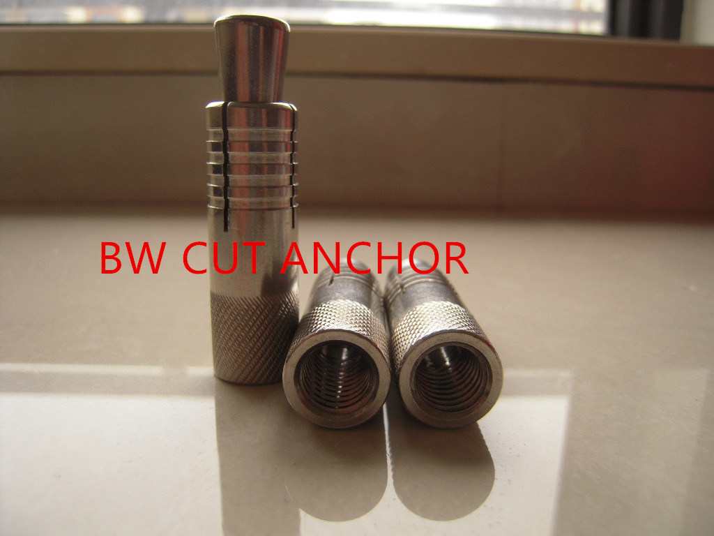 Stainless Steel Cut Anchor