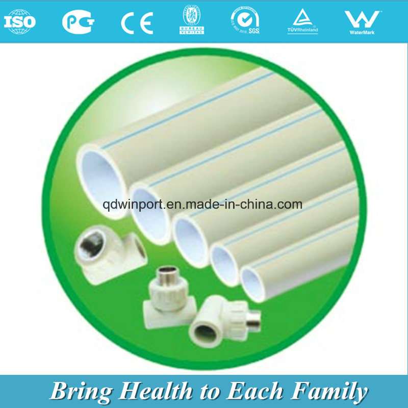 PPR Pipe for Hot and Cold Water