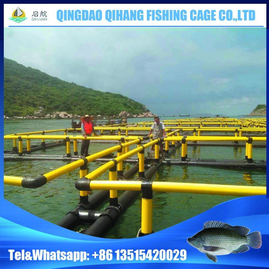 HDPE Floating Platform Fish Cage for Fish Breeding