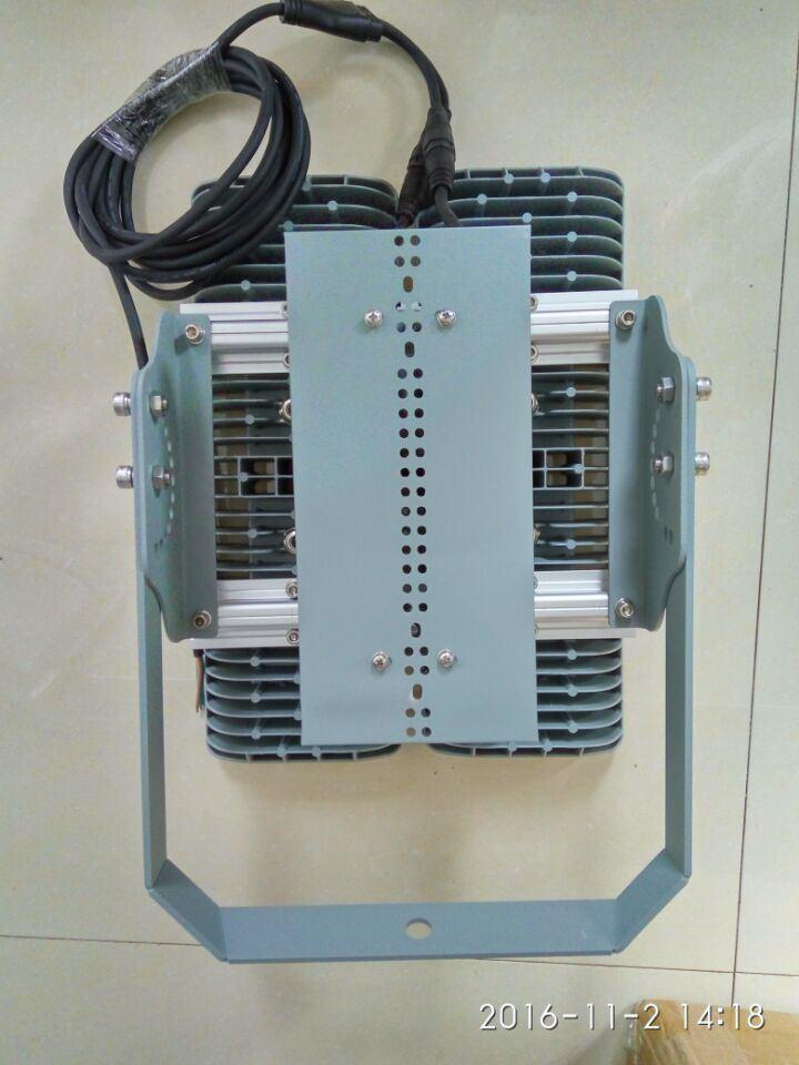 260W Outdoor Anti-Knockflood Light Fixture (BTZ 220/260 55 Y)