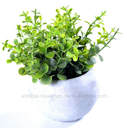 Kinds of Artificial Vivid Plants in Cement Pot for All Public Decoration
