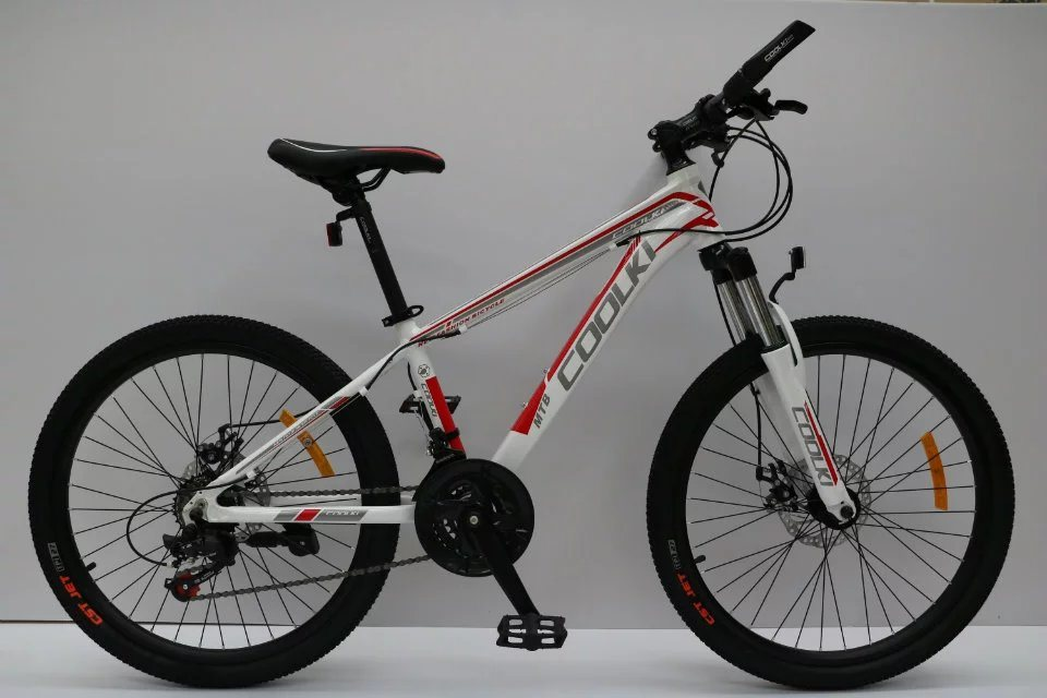 "26"" 21speed /24 Speed Alloy Mountain MTB Bike Bicycle /Disc Brake/Wenda Tire/High Quality Parts"