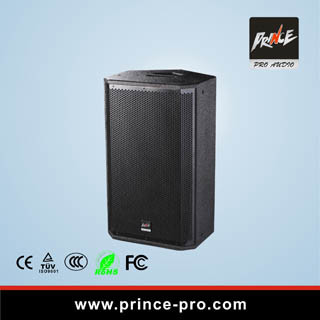 Loudspeaker PRO Audio500W Single 10inch for Multi-Function Room