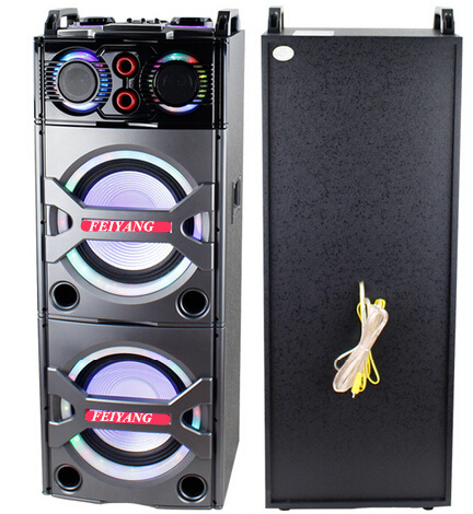 Double 10inch Bluetooth PA Loudspeaker Karaoke Entertainment System, Wireless Mic E246