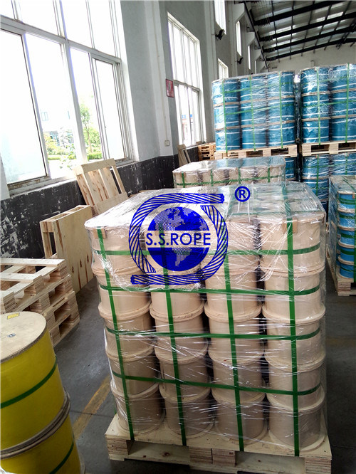 Nylon Coated Steel Wire Rope 316 1*7-0.45/0.7mm
