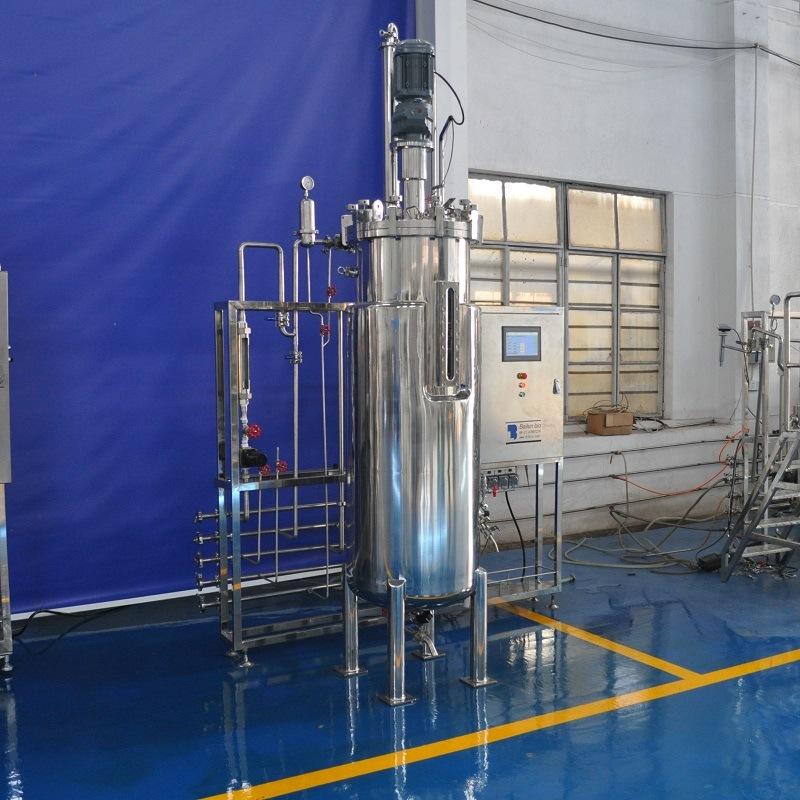 300 Liters Stainless Steel Fermenter (Mechanical stirring)