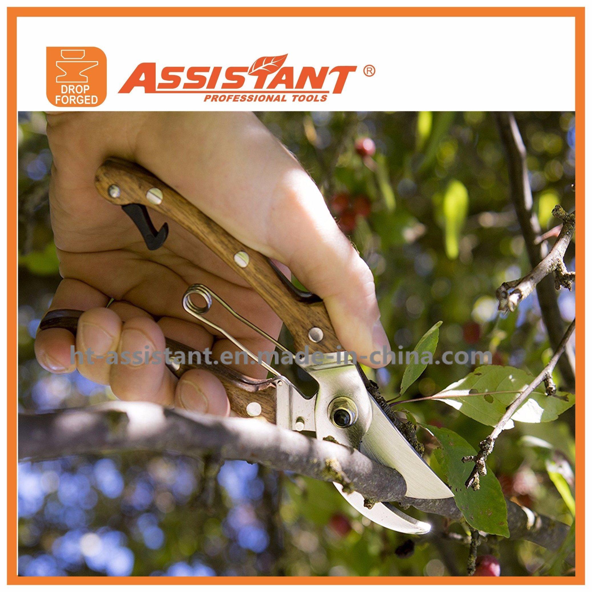 """8"""" Garden Secateurs Bypass Pruning Shear Floral Grape Cutting Scissors"""