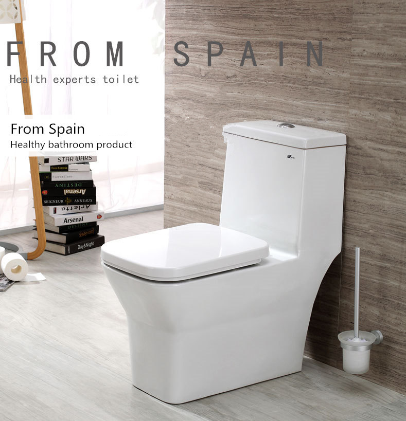 Luxury Flush Toilet Mute Wash Siphonic Closestool Watersaving