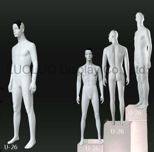 ODM fashion Male Mannequin with Hair