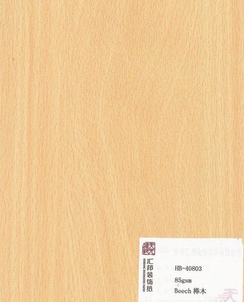 Beech (HB-40803)