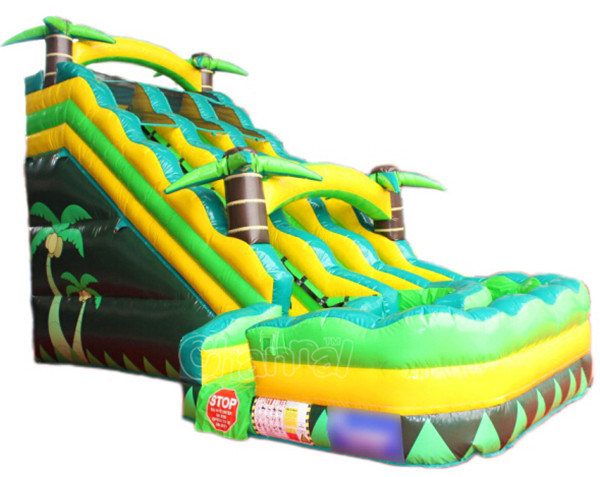Dual Lane Tropical Inflatable Water Slide Chsl656